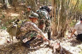 จับพรานป่ายิงเสือไฟในเขตภาชี สยามรัฐ