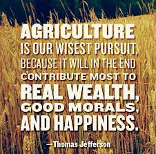 Ffa Quotes Simple 48 QUOTES THAT CELEBRATE AGRICULTURE Corn Corps Blog