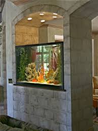 Small Picture The 25 best Home aquarium ideas on Pinterest Amazing fish tanks