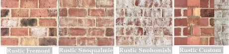 Rustic Thin Brick in the Ravenna, Magnolia, Ballard, Fremont, Snoqualmie,  and snohomish color mix is available in these sizes: