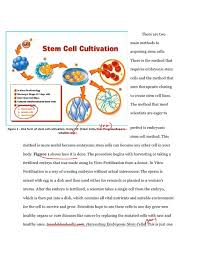 pro stem cell persuasive essay research cells human embryos and  pro stem cell persuasive essay research cells human embryos and ethics home design idea persuasive essays and interiors