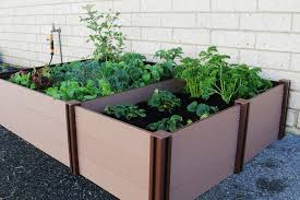 own vegetables with a raised garden bed