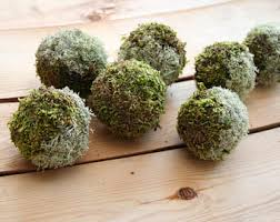 Decorative Moss Balls Decorative moss ball Etsy 92