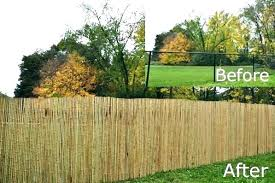 chain link fence privacy screen. Creative Chain Link Fence Privacy Screen Bamboo For Incredible Ideas Upgrade