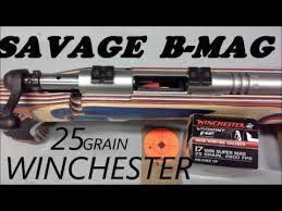 Savage B Mag With Winchester 25 Grain 17 Wsm Ammo