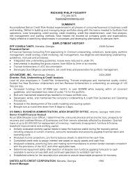 Resume Risk Management Resume Samples
