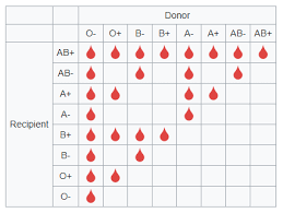 Blood Type Donor Compatibility Chart Blood Donor Recipient Compatibility Chart Album On Imgur