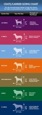 dog crates size chart dog breed chart comparison dog breed size chart pets products