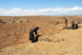 flooding and insecurity after drought the lutheran world federation lasta and lalibela in north wollo amhara is one of the districts most seriously affected by drought photo lwf s gebreyes