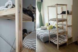 and easy cat climber for fat and clumsy cat