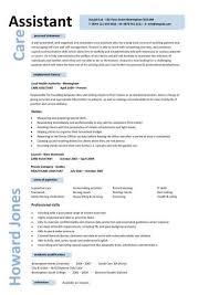 Caregiver Professional Resume Templates | Care assistant CV template, job  description, CV example,