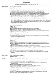 Container Crane Operator Sample Resume Crane Operator Resume Samples Velvet Jobs 6