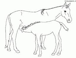 Paarden Kleurplaten Uitprinten