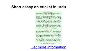 essay on cricket as my favourite game life graduating tk essay on cricket as my favourite game
