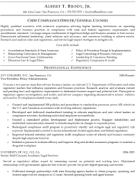 Ethics And Compliance Officer Sample Resume Custom Piqqus Great Sample For Resume And Template