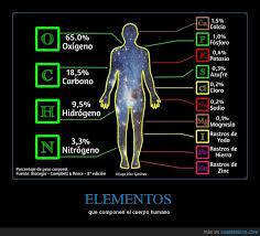 Somos polvo de estrellas: Los elementos que componen el cuerpo humano    estudiafeliz