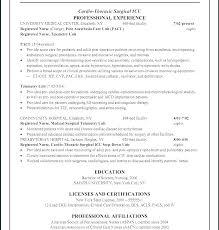 Anesthetic Nurse Sample Resume Fascinating Nursing Resume Objectives For Entry Level Resumes New Graduate Nurse