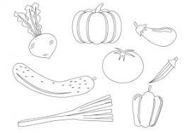 ぬりえ素材野菜 イラスト無料かわいいテンプレート
