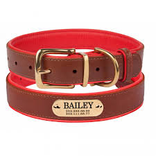 brass buckle leather dog collar personalized nameplate laser engraved small medium large soft padded red