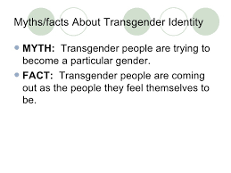 one umbrella many people um med school   26 myths facts about transgender