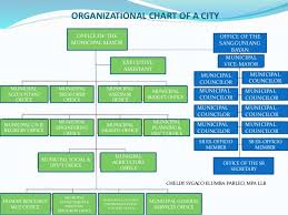 Chart Organization Of Local Government Summary Report On Local Government Unit Lgu