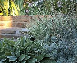 Small Picture 15 best tookoo landscape designs images on Pinterest Landscape