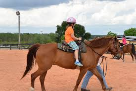 Dream Catchers Horse Ranch A Day At DreamCatcher Ranch in Clermont Florida Great Things 100
