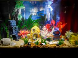 Spongebob Bedroom Decorations How To Decorate Your Boring Fish Tank Fish Spongebob