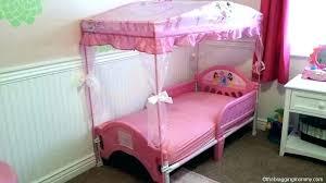 Unique Girl Canopy Bedroom Sets Or Princess Toddler Bed Set Little ...