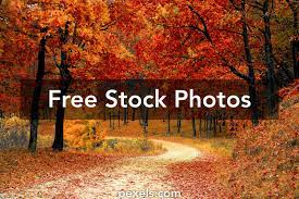 70,000+ Best Autumn Wallpaper Photos ...