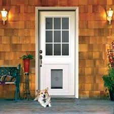 doggy door ideas with built in back dog flap gallery design diy