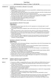 Project Manager Resume Template Senior It Summary Sample Doc