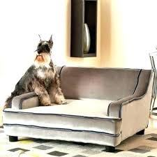 High end dog beds Gold Dog High End Dog Beds Fancy Pet Sofa Bed And Couches Medium Size Of Uk High End Dog Beds Kristiansandnorwayinfo High End Dog Beds Bed Quality Orthopedic Kristiansandnorwayinfo