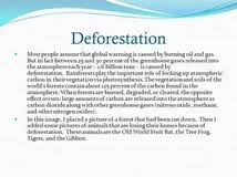 essay on deforestation and global warming do my math homework essay about deforestation