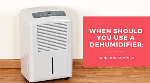 When To Use A Dehumidifier In Winter Or Summer