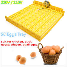 56 quail automatic incubator en duck eggs turner tray with 110v 220 motor