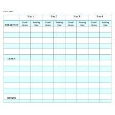 Diary Format Template Form Food Journal Template Free Printable Word Templates 7