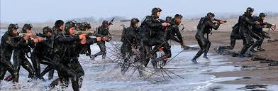 Image result for irgc