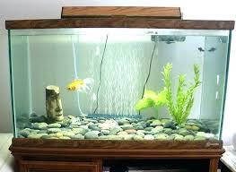 fish for office. Office Fish Tanks Tank Desktop Design For Small