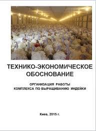 Бизнес план ТЭО Выращивание индейки Комплекс Птицефабрика  Индейка Птицефабрика ферма Производства мяса индейки Интенсивный метод big 6 but 8 9
