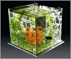 betta fish tank decor fish tank ideas betta fish tank accessories