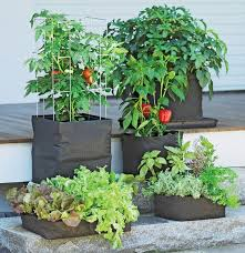 Grow Bags - <b>Tomatoes</b>, Peppers, Herbs and Potatoes