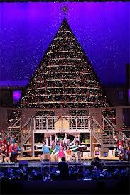 Homemade Christmas Tree  Christmas Lights DecorationThe Living Christmas Tree Knoxville Tn