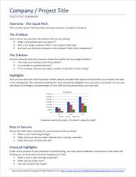 Executive Summary Executive Summary Template For Word