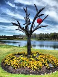 Image result for the tree in the garden of eden