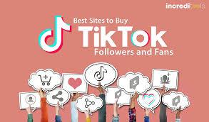 40 Best Sites to Buy TikTok Followers (2021)