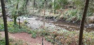 Grass Valley Wolf Creek Trail - California   AllTrails