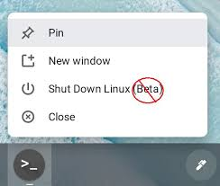 Chromebooks will get this handy feature with chrome os 91, expected to arrive on june 1. Google Is Bringing Linux App Support For Chromebooks Out Of Beta Liliputing