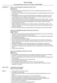 Ecommerce Resume Sample Digital Ecommerce Resume Samples Velvet Jobs 5