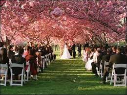 New York Outdoor Wedding Venue - Brooklyn Botanical Gardens